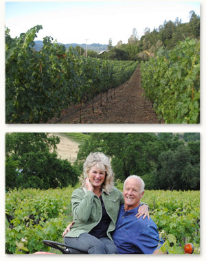 Visit Barrett vineyards in Calistoga, Napa Valley